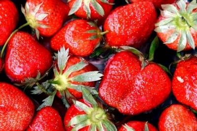 Erdbeeren (c) Margrit Wittwer / pixelio.de