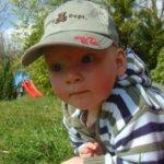 aktionsprogramm kindertagespflege