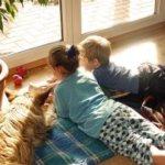 Sprachkompetenz bei Vierjährigen