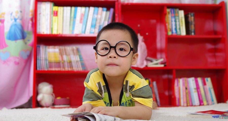 Junge mit Brille schaut ein Buch an (c) jutheanh / pixabay.de